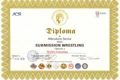 DiplomaSubSenior