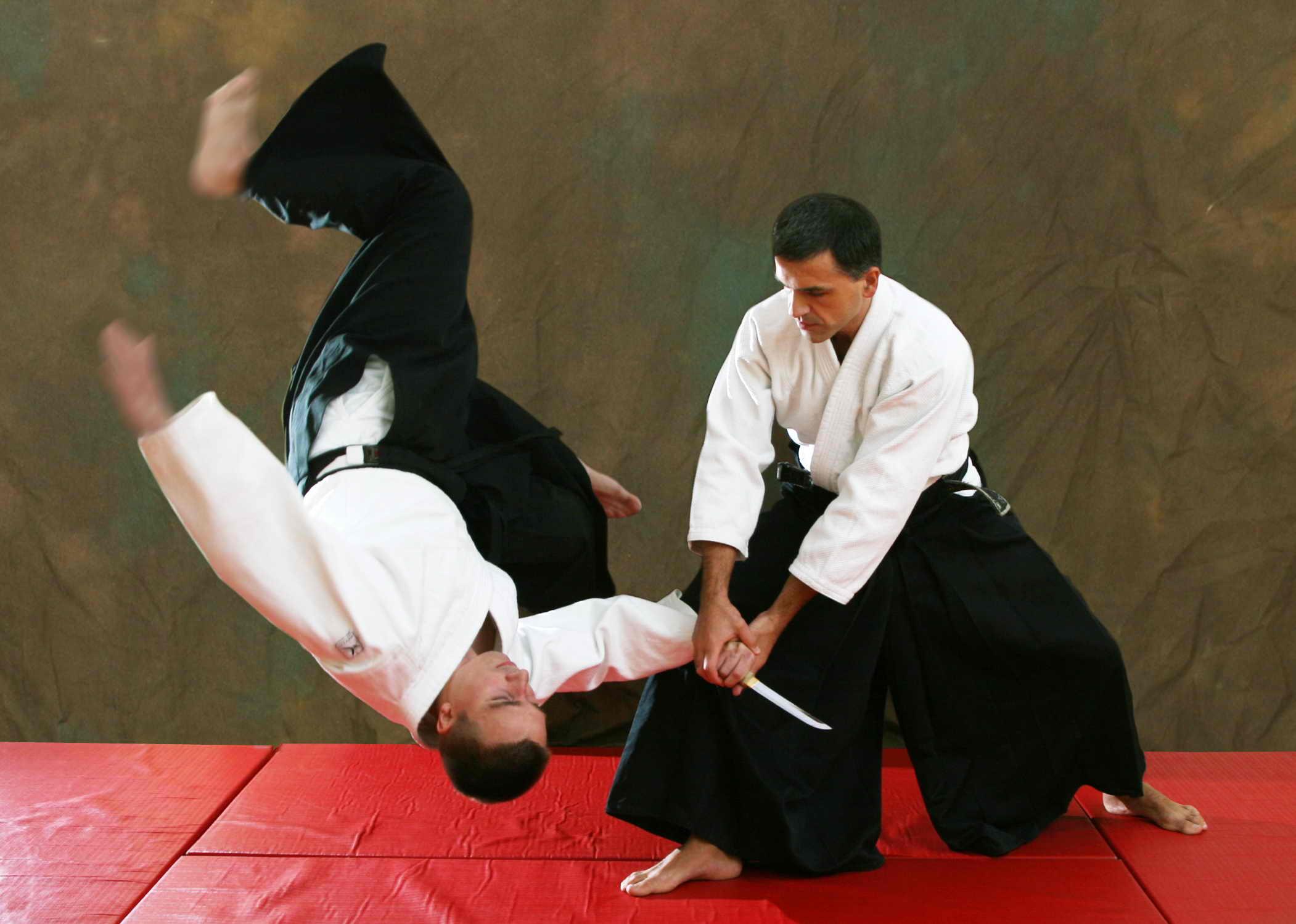 Aikido match